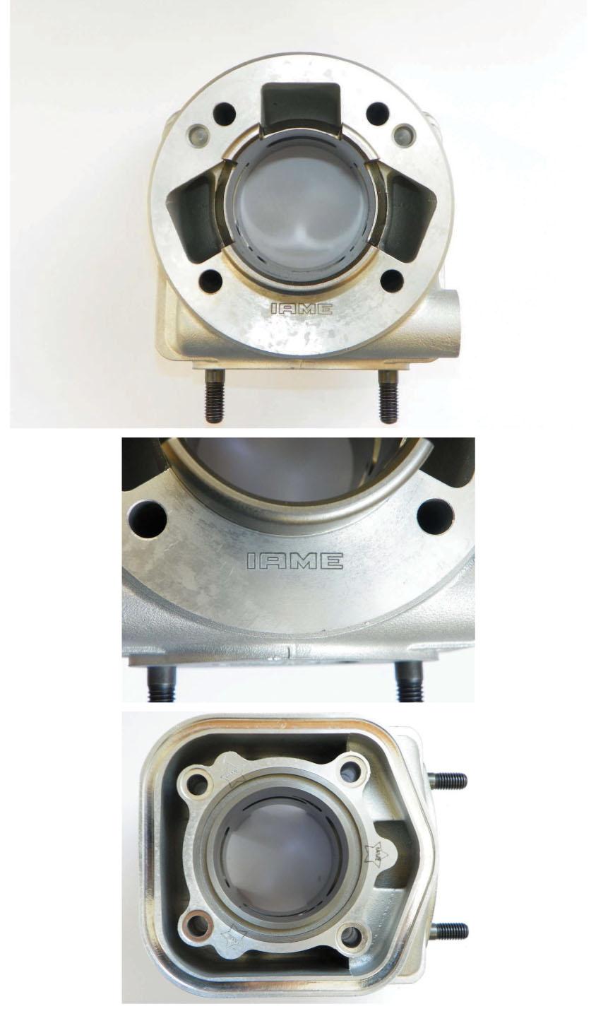 IAME X30 Zylinder in Version 2014