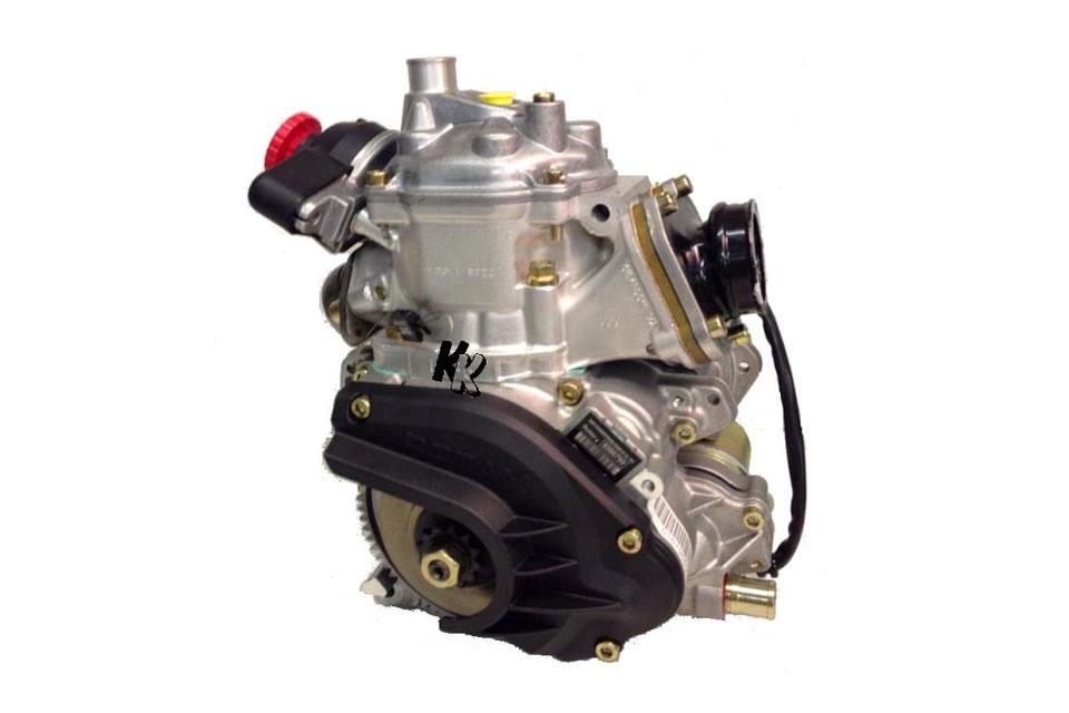 ROTAX Max Rumpfmotoren bei Kartsport-Klimm