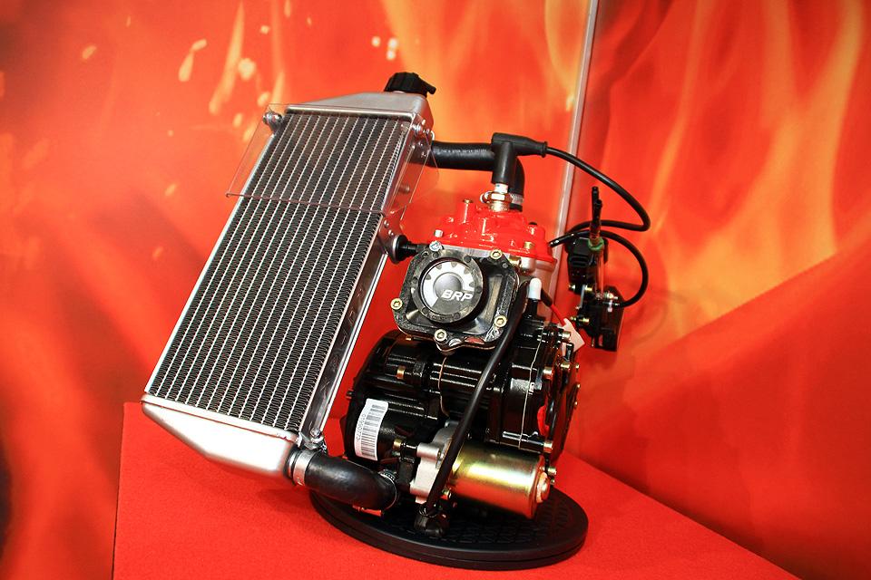 Der neue Rotax 125 MAX evo